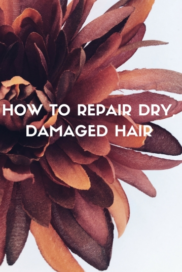 how-to-repair-dry-damaged-hair